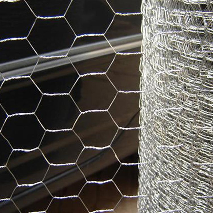 PVC Coted Hexagonal Wire Mesh For Farm Featured Image