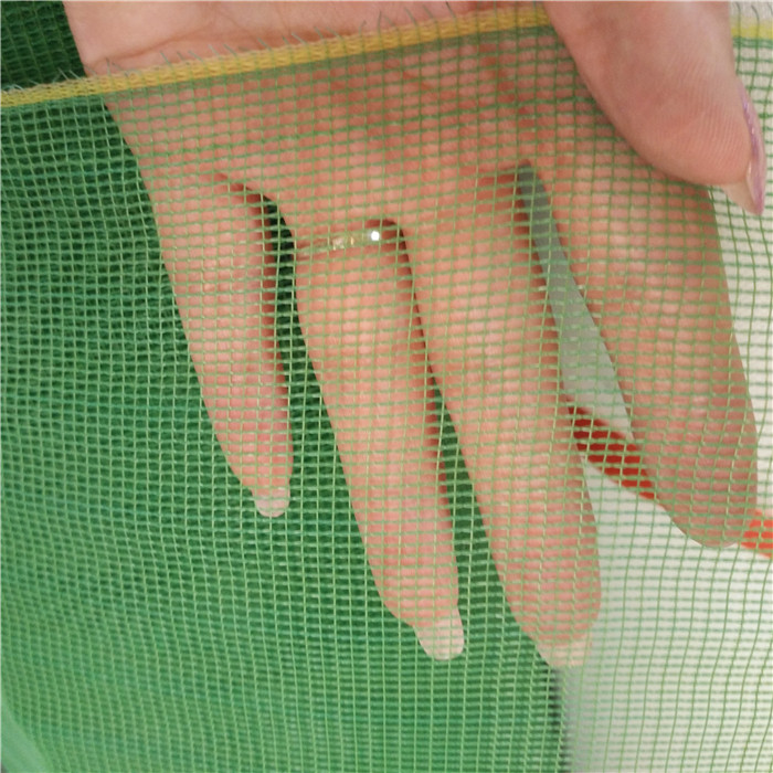 Green Colour PE Insect Screen