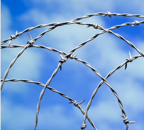 PVC Coated And Galvanized Barbed Wire Featured Image
