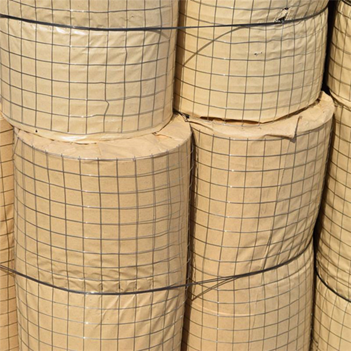 2×2 Aperture Welded wire mesh roll