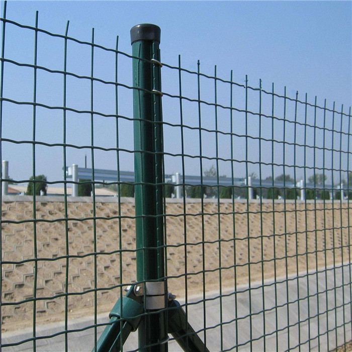 "2""x3"" Green PVC Coated Welded Wire Mesh Fence"
