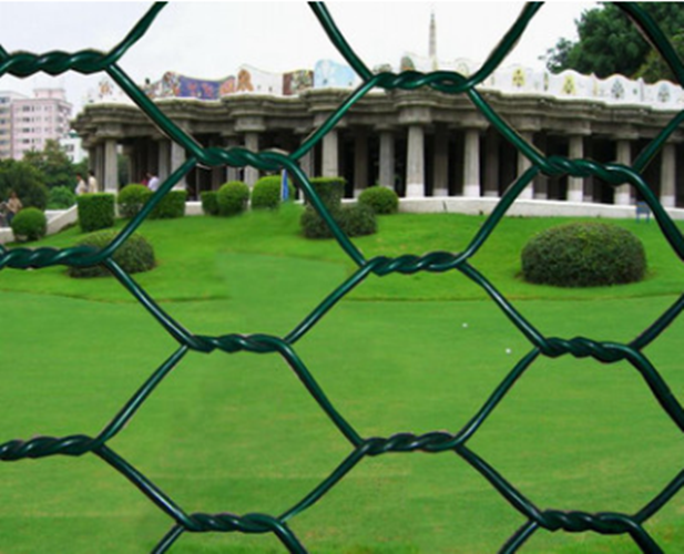 PVC Coated Hexagonal Wire Netting For Poultry Coop