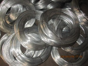 DIip Galvanized filo ferreo-Hot