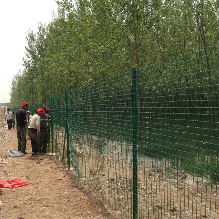 Welded Wire Mesh Europe Security Fence