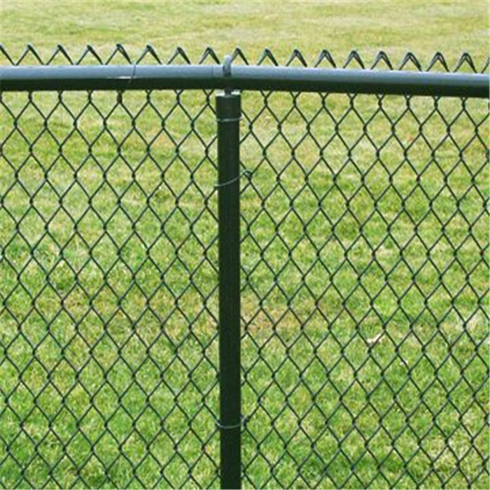 Green PVC Coated Chain Link Fence/Diamond Wire Mesh Featured Image