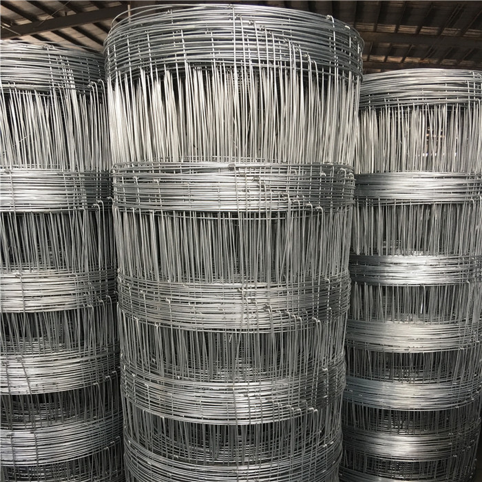 Hot Dipped Galvanized Woven Wire Deer Fence Featured Image