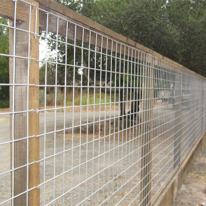 Calidum filum mesh panels Immergeret Galvanized Welded