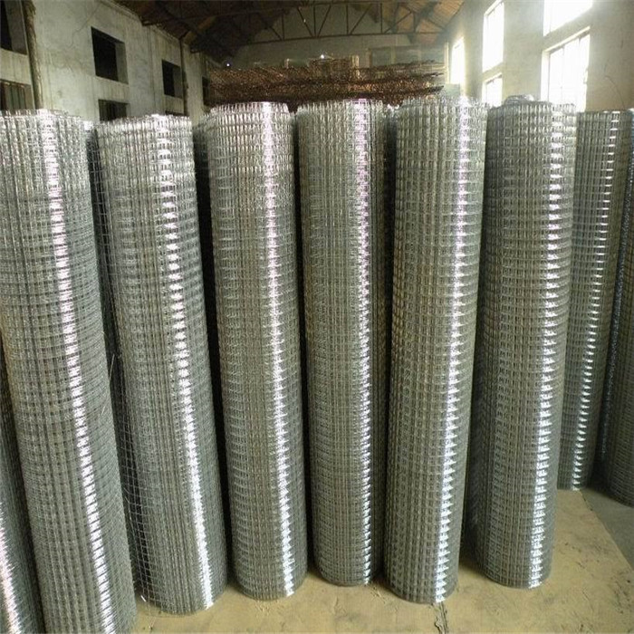 3/4 Welded Wire Mesh Rolls With Square Hole