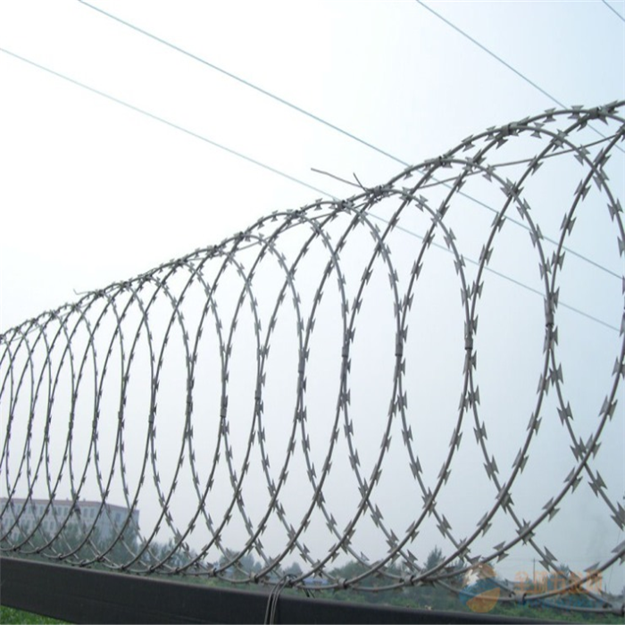 BTO-22 Hot-Dip Galvanized Razor Wire For Farm Protection Featured Image