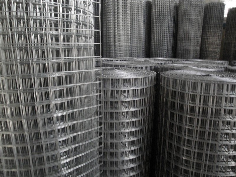 Galvanized Welded Wire Mesh In Rolls