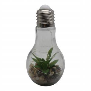 Beautiful eco friendly design hanging lamps high quality led bulb with plant