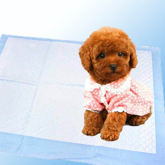 wholesales disposable nonwoven pet pads for dogs and cats
