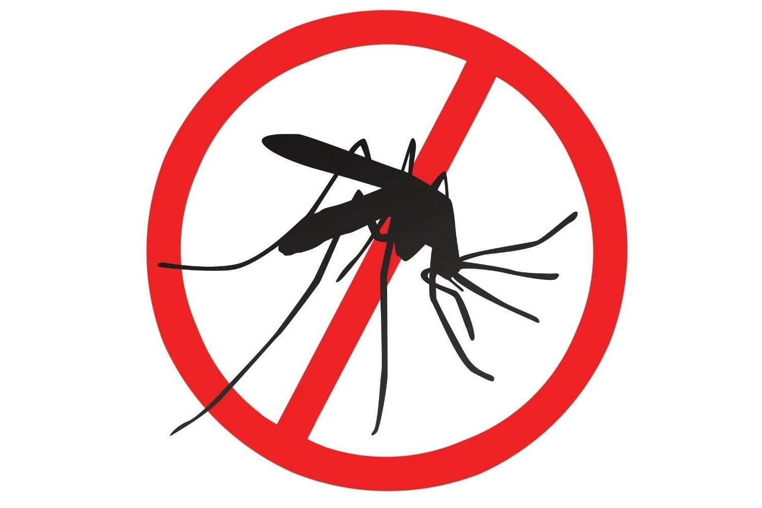 The importance of mosquito repellent in the summer