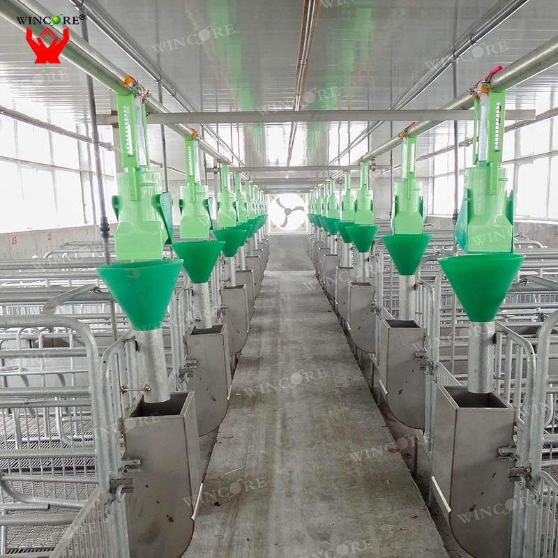 Pig farming equipment Sow Automatic feeder animal feeding line system