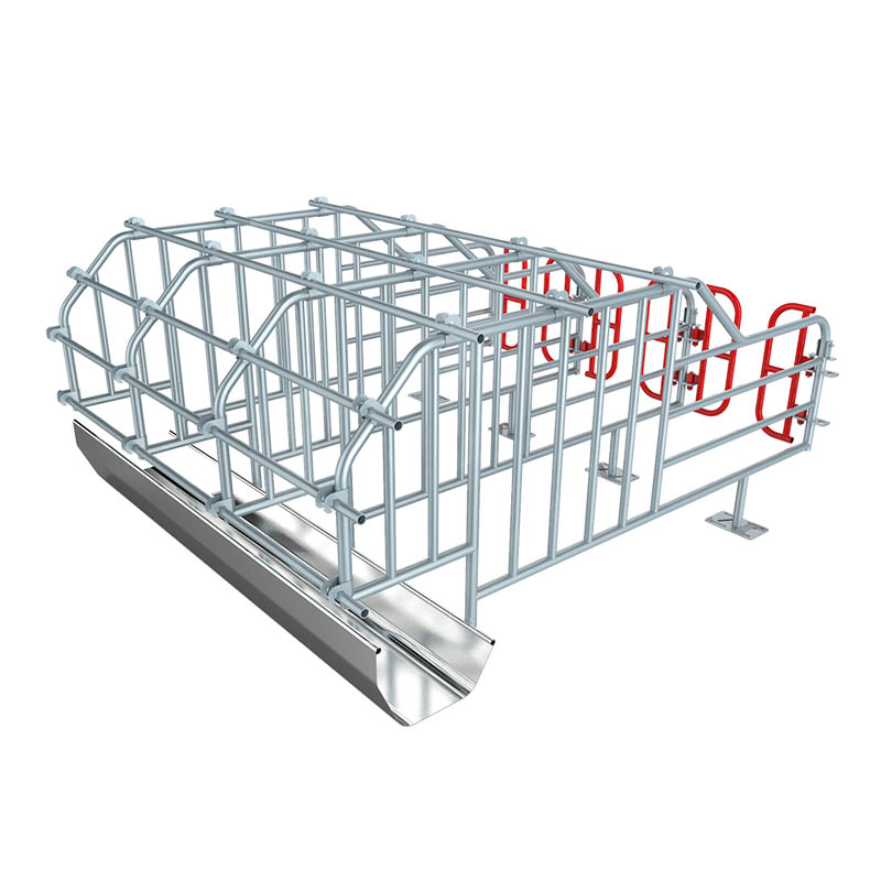 Pig Farming Equipment Galvanized Pipe Sow Gestation Cages Stall Pen Pig Gestation Crate