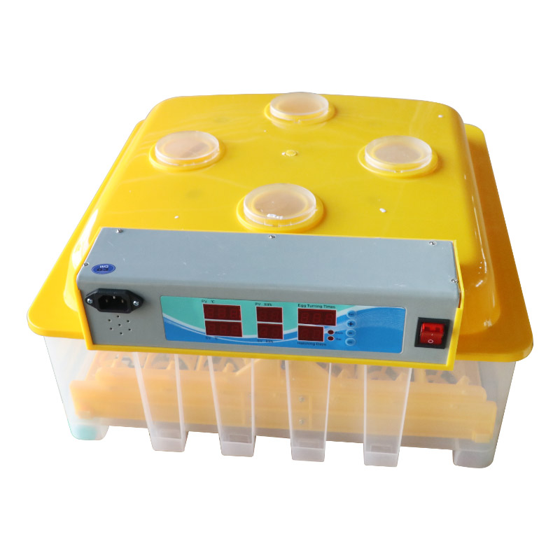Poultry Chicken Quail DC12v 220 Volt Mini Full Automatic Controller 56 Egg Incubator Machine Price In India