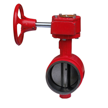 Factory Supply Rubber Disc Check Valve -