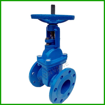 China Bs5163 Rs Resilient Wedge Gate Valve For Water