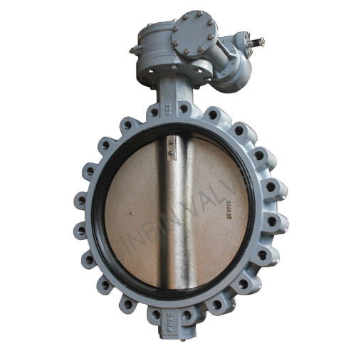 PN25 Large siize lugged type butterfly valve