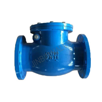 DIN F6 Cast iron swing check valve