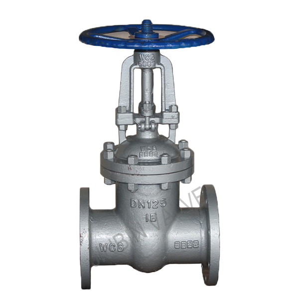 China OEM Cast Iron Gate Valve -