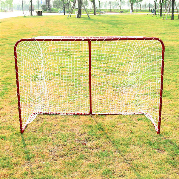 Hockey Goal Featured Image