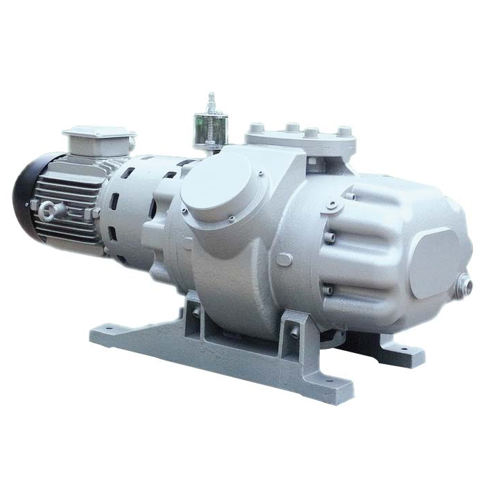 Wholesale Rotary Vane Vacuum Pump System - Roots Vacuum Pump – Joysun