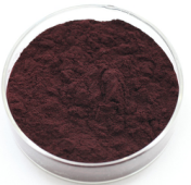 Bilberry extract1
