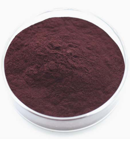 Blackcurrant Extrac32