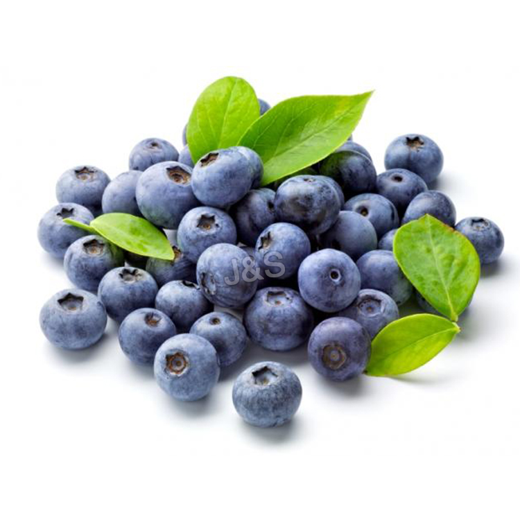 Special Design for Blueberry extract Factory in Costa Rica