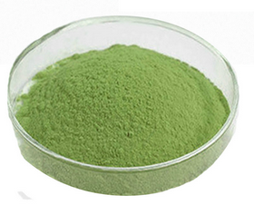 broccoli powder1