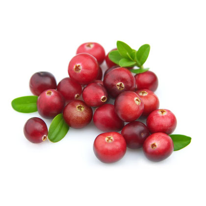 Renewable Design for Cranberry Extract Manufacturer in Accra