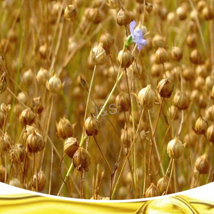 8 Year Exporter Flaxseed Extract Factory in French
