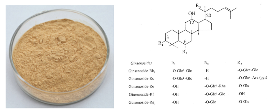 Ginseng extract111