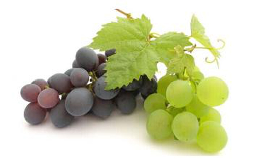 Grape Skin Extract11321