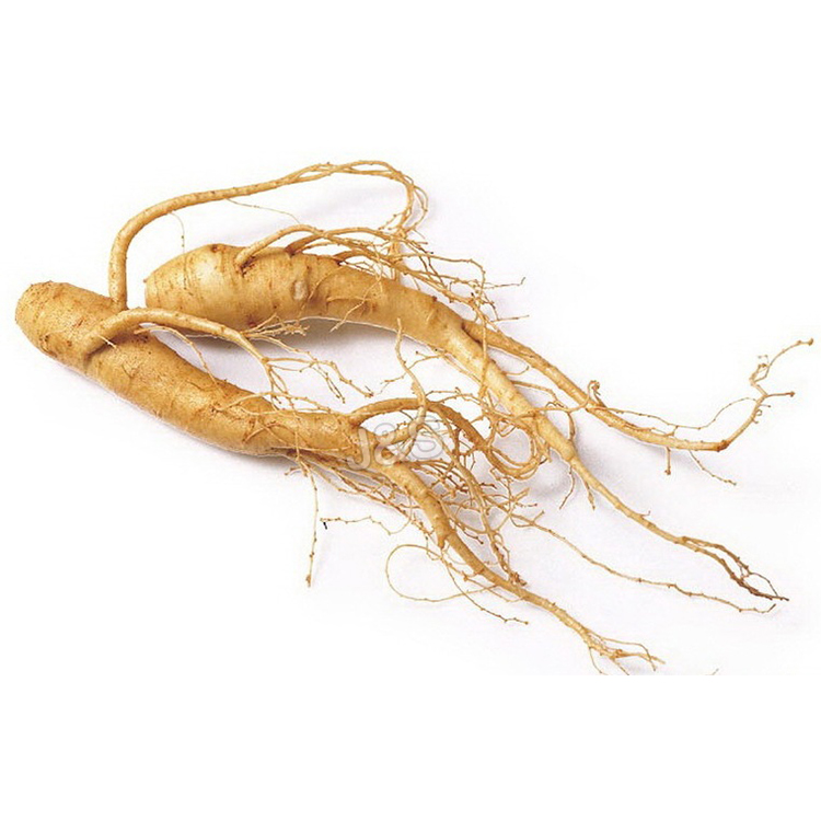 Renewable Design for Organic Ginseng extract in Malaysia