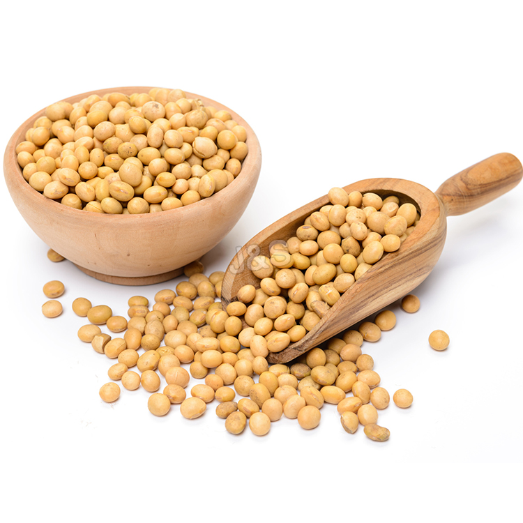 Competitive Price for Soybean extract Factory for Iceland