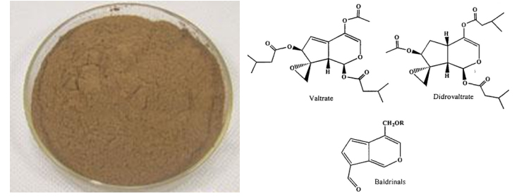 Valerian root extract11