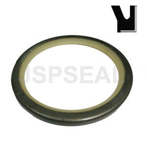 PIN DUST/SCRAPER RING VOE 11005017