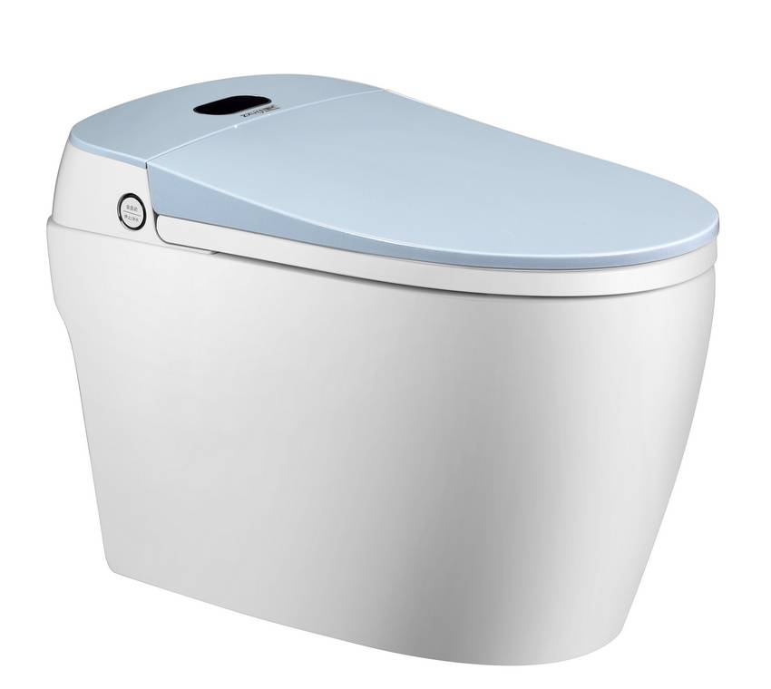 Rapid Delivery For Electric Washlet Toilet Seat Jt 1017
