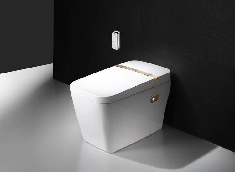 Intelligent integrated toilet JT 960L Featured Image