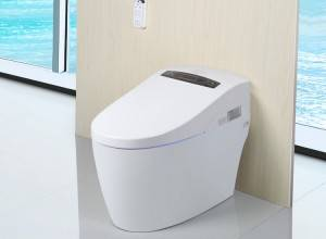 Reasonable price for Magnetic Toilet Seat -