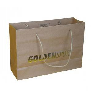 Hot Stamping Logo Paper Bag for Shopping and Clothes, Gift, Groceries Packing