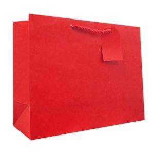 Basic Color Custom Paper Bag with Rope handle