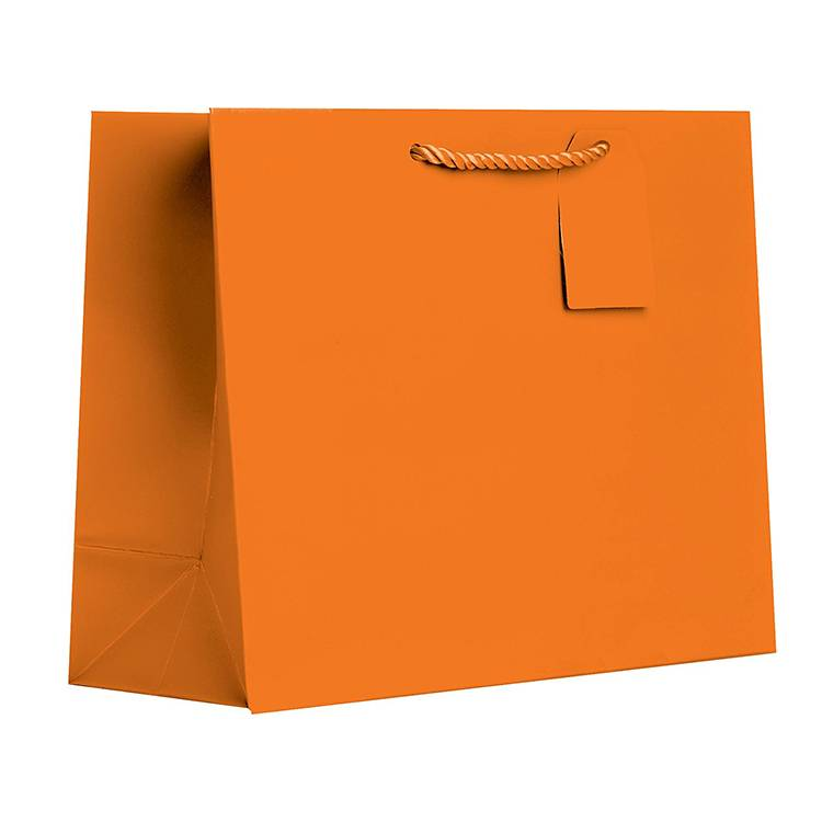 Basic Color Custom Paper Bag with Rope handle Featured Image