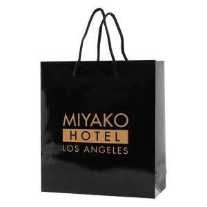 Glossy Laminated Shopping Bag for Clothes and Merchandise