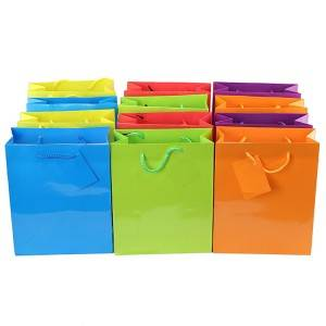 Custom Glossy Coated Paper Packing Bag for Shopping and Retail