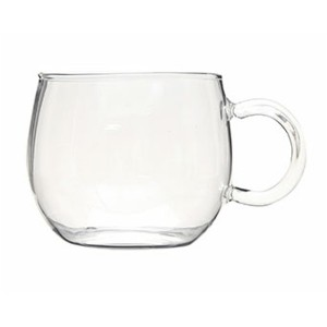 Factory wholesale Fruit Infusion Pitcher -