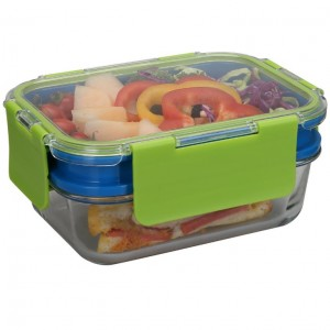 High Borosilicate Glass Double Layers Lunch Box