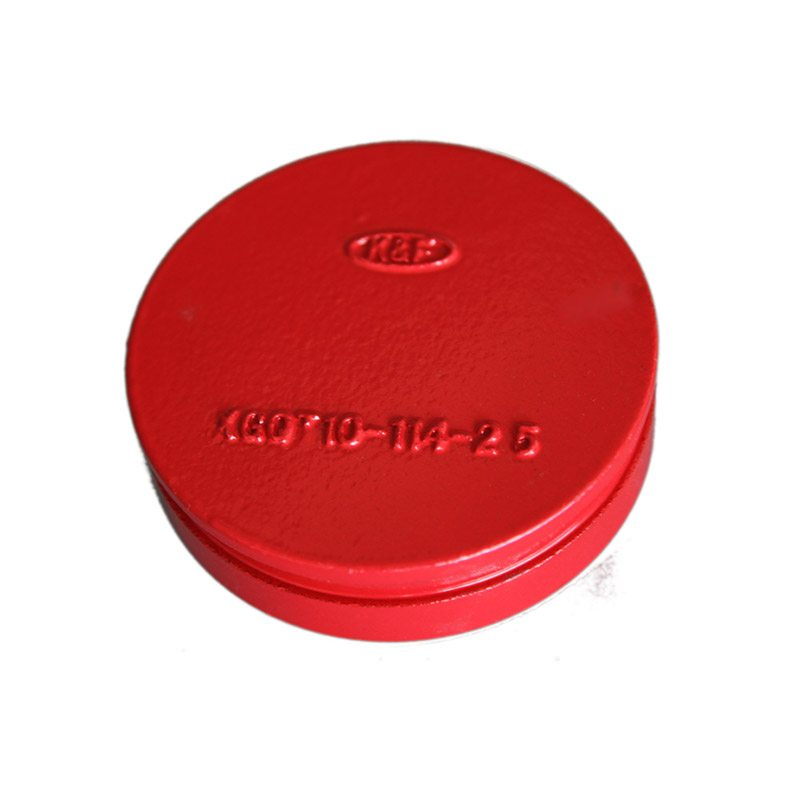 Excellent quality for Grooved Cap for Algeria Manufacturers detail pictures